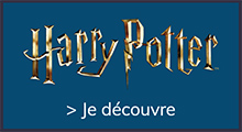 harry potter_bannière